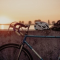 Jaki wybrać rower szosowy?